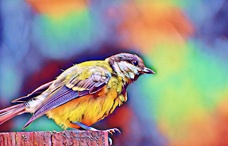 Bayou heron bird transparent clipart clip art freeuse stock Clip Art: Animals with a little Pop clip art freeuse stock