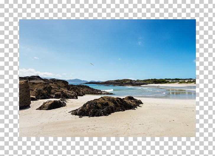 Beach cove clipart banner free download O\'Carroll\'s Cove Beach Bar & Restaurant Shore Ring Of Kerry Campsite ... banner free download