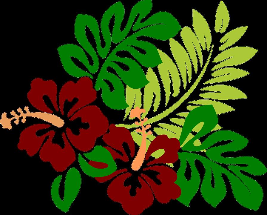 Beach flower clipart clipart freeuse Kostenloses Bild auf Pixabay - Hibiskus, Blumen, Rot, Tropisch ... clipart freeuse
