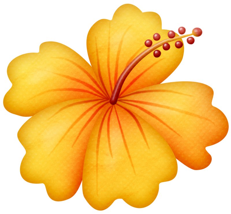 Beach flower clipart jpg stock lliella_gumamela3.png | Pinterest | Tropical party, Cricut and ... jpg stock