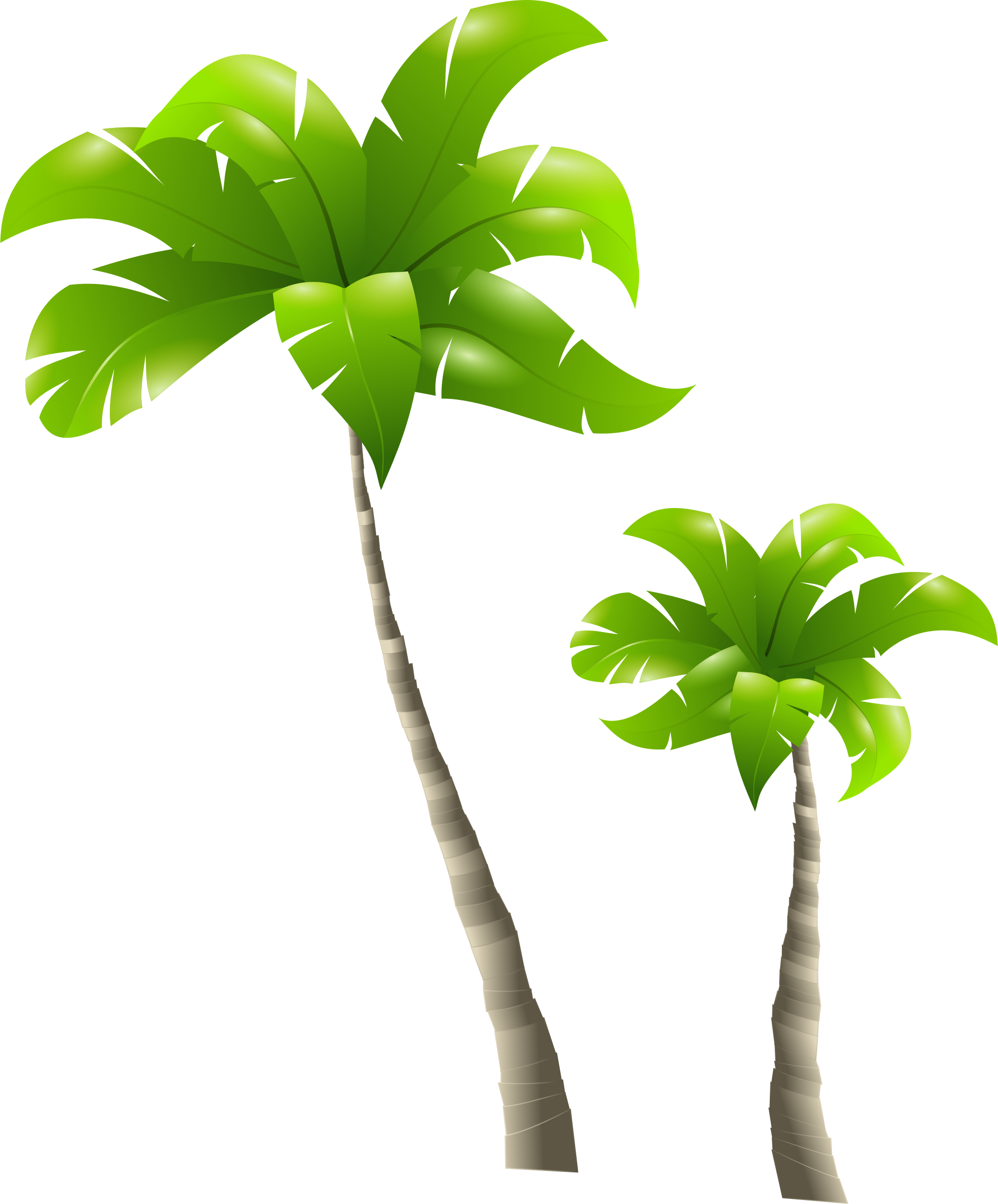 Clipart palm tree png free library Cp Paurb: Palm Trees And Beach Clip Art Clipart palm trees png free library
