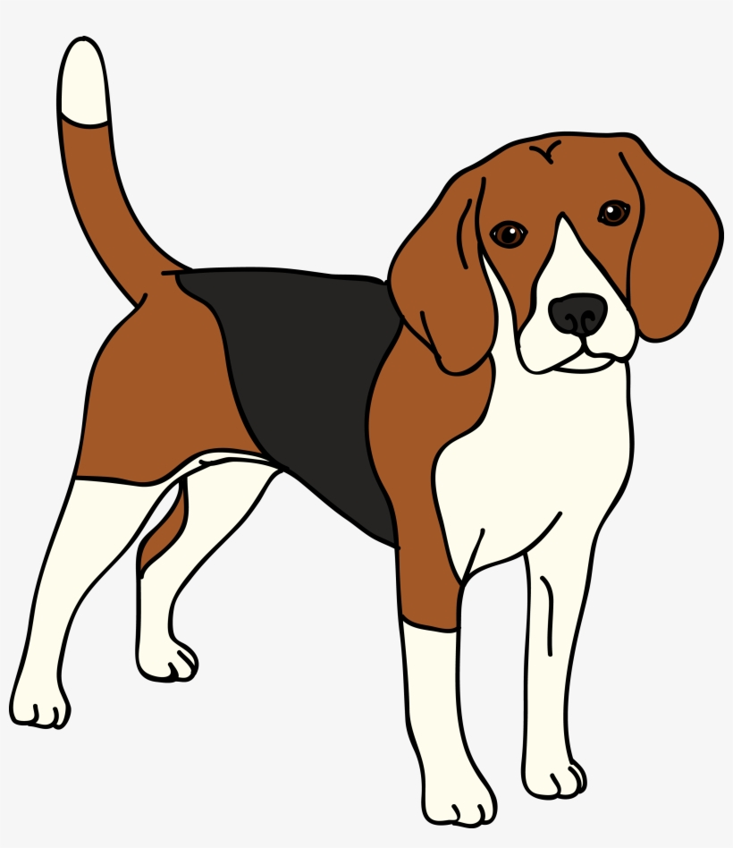 Bealge clipart banner library download Beagle Vector Dog - Beagle Clipart Transparent PNG - 2995x3317 ... banner library download