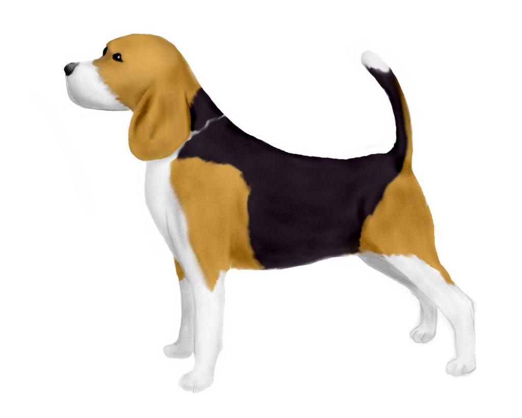 Bealge clipart svg black and white Beagle Cliparts - Cliparts Zone svg black and white