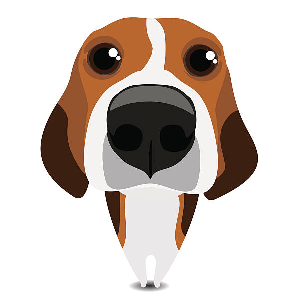 Bealge clipart jpg transparent library Beagle Clipart 120 Clip Arts For Free Download On Astonishing ... jpg transparent library