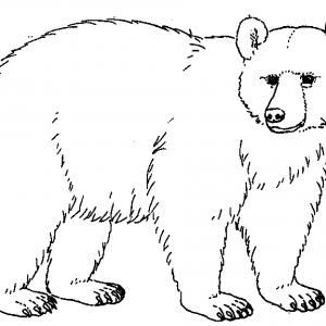 Bear black and white clipart clip free download Bear black white brown bear clipart black and white china cps ... clip free download