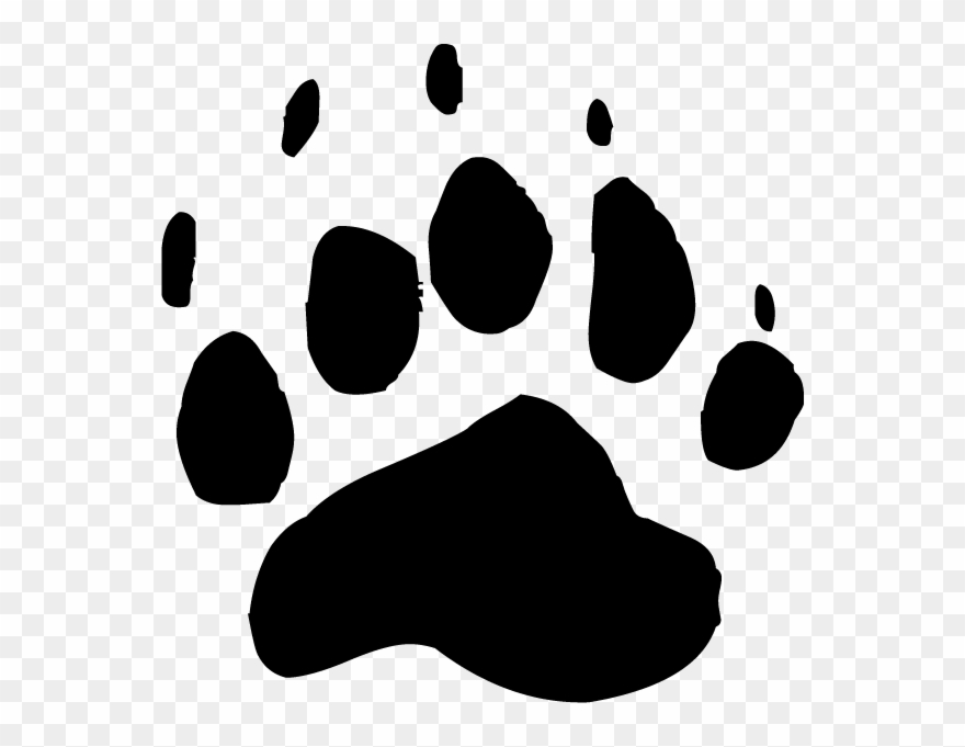 Bear black and white clipart bear paw jpg free download Bear Paw Clipart Transparent - Png Download (#694396) - PinClipart jpg free download