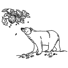 Bear eating black berry clipart banner black and white library Top 10 Free Printable Brown Bear Coloring Pages Online banner black and white library
