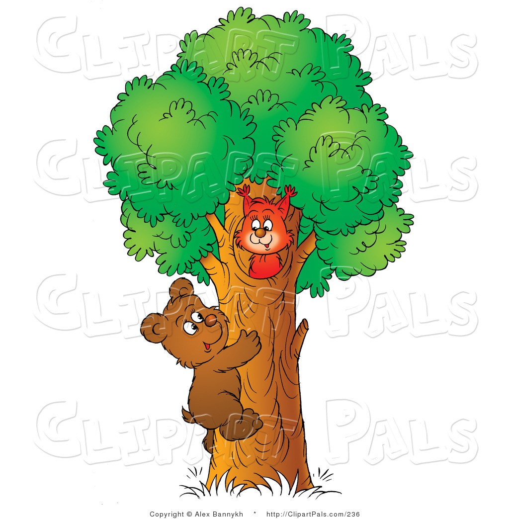 Bear in a tree clipart png transparent With Clipart Cat Climbing A Tree Pal Of Cute Brown Bear Cub To Visit ... png transparent