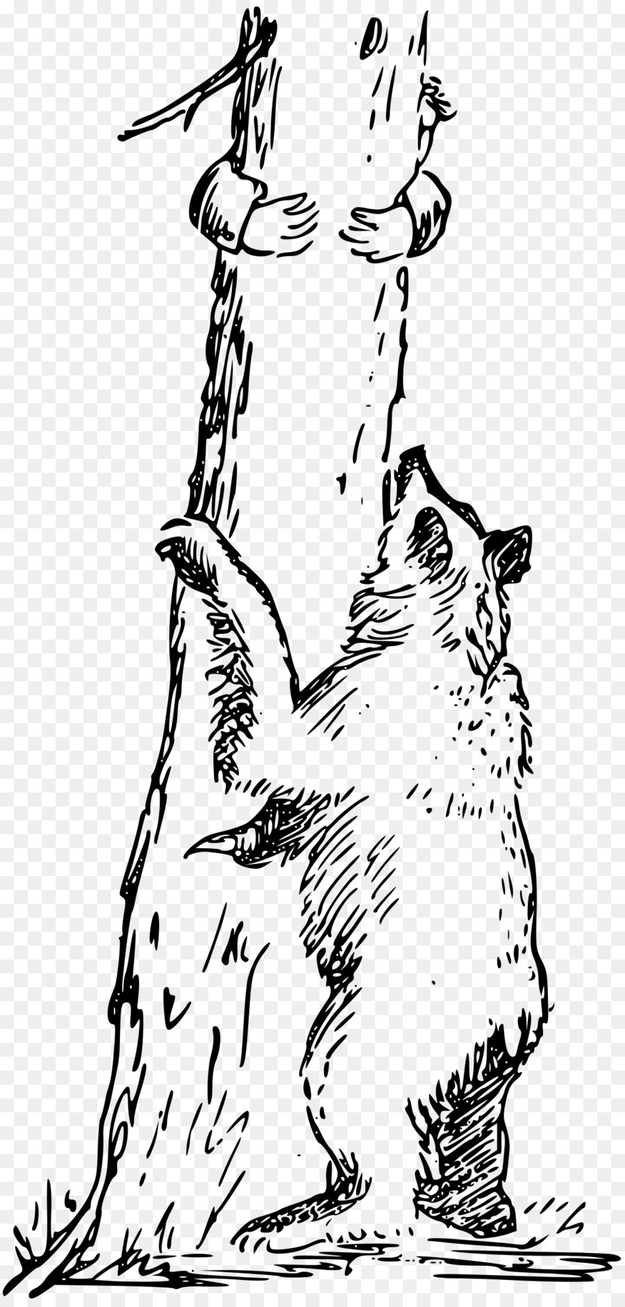 Bear in a tree clipart royalty free stock Black Line Background clipart - Bear, Climbing, Drawing, transparent ... royalty free stock