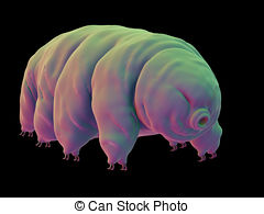 Bear in water clipart banner freeuse stock A water bear Illustrations and Clipart. 438 A water bear royalty ... banner freeuse stock