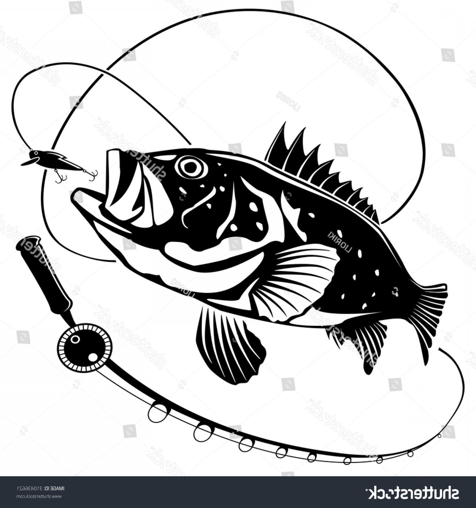 Bear with fishing pole clipart black and white image transparent stock Vector Illustration Sea Bass Fish Fishing | SOIDERGI image transparent stock