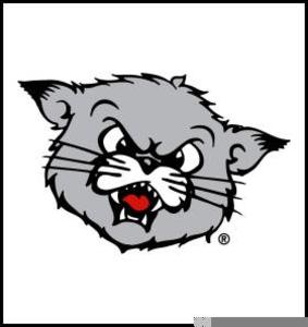 Bearcat clipart university of cincinnati jpg royalty free library Cincinnati Bearcat Clipart | Free Images at Clker.com - vector clip ... jpg royalty free library