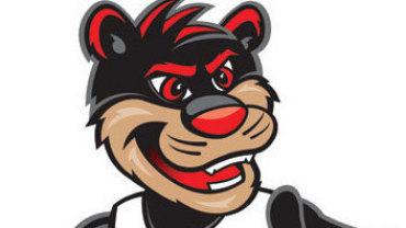 Bearcat clipart university of cincinnati picture free download Free Bearcat Mascot Cliparts, Download Free Clip Art, Free Clip Art ... picture free download