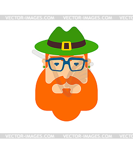 Beard clipart hipster hat freeuse stock Leprechaun hipster face. Hat and beard. - vector clipart freeuse stock