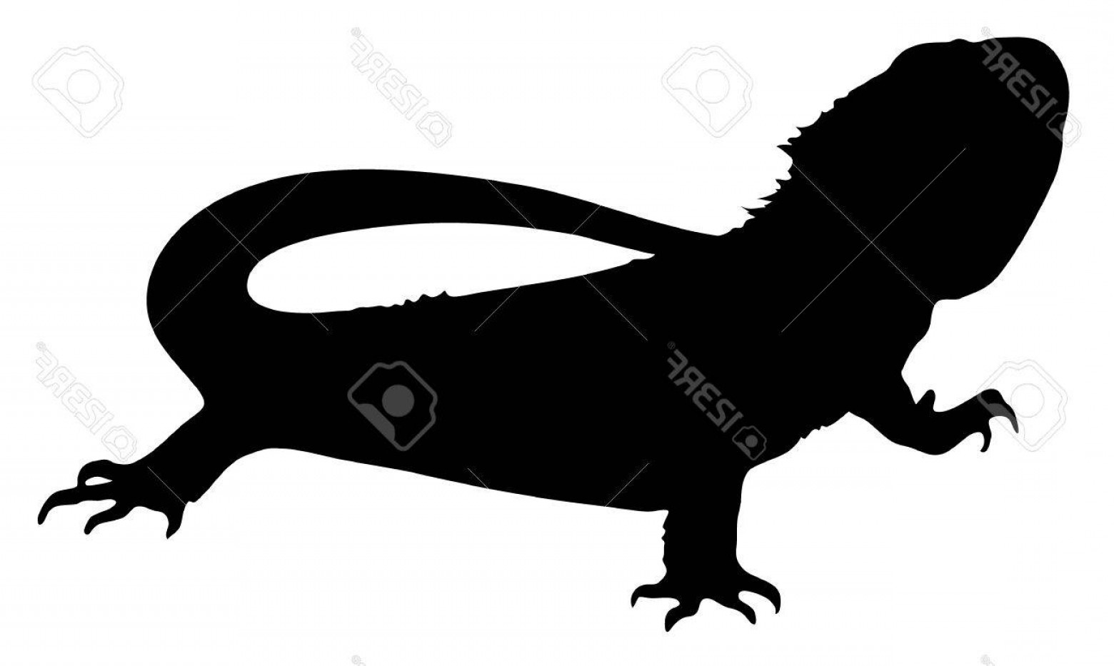 Bearded dragon silhouette clipart freeuse stock Photovector Graphic Silhouette Of A Bearded Dragon | SOIDERGI freeuse stock