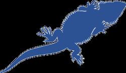 Bearded dragon silhouette clipart svg Bearded Dragon Lizard Silhouette Sticker svg