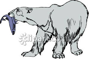 Bears eat fish clipart jpg free download Polar Bear Eating A Fish - Royalty Free Clipart Picture jpg free download