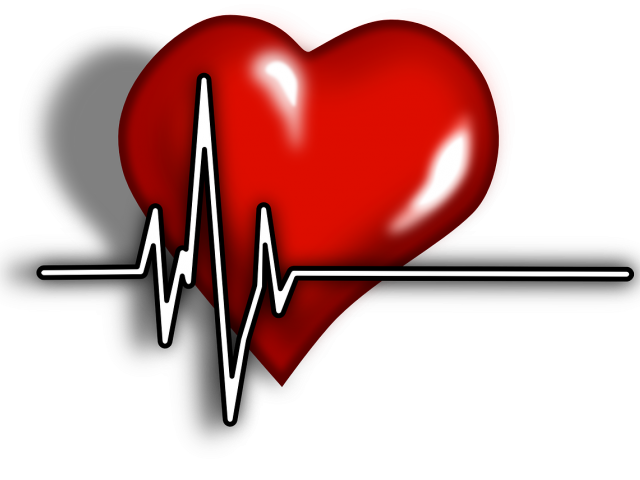 Beating heart clipart png freeuse stock Beating Heart Clipart 15 - 576 X 432   carwad.net png freeuse stock
