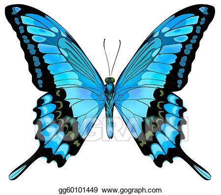 Beautiful blue butterfly clipart freeuse library Vector Stock - Beautiful vector isolated blue butterfly. Clipart ... freeuse library