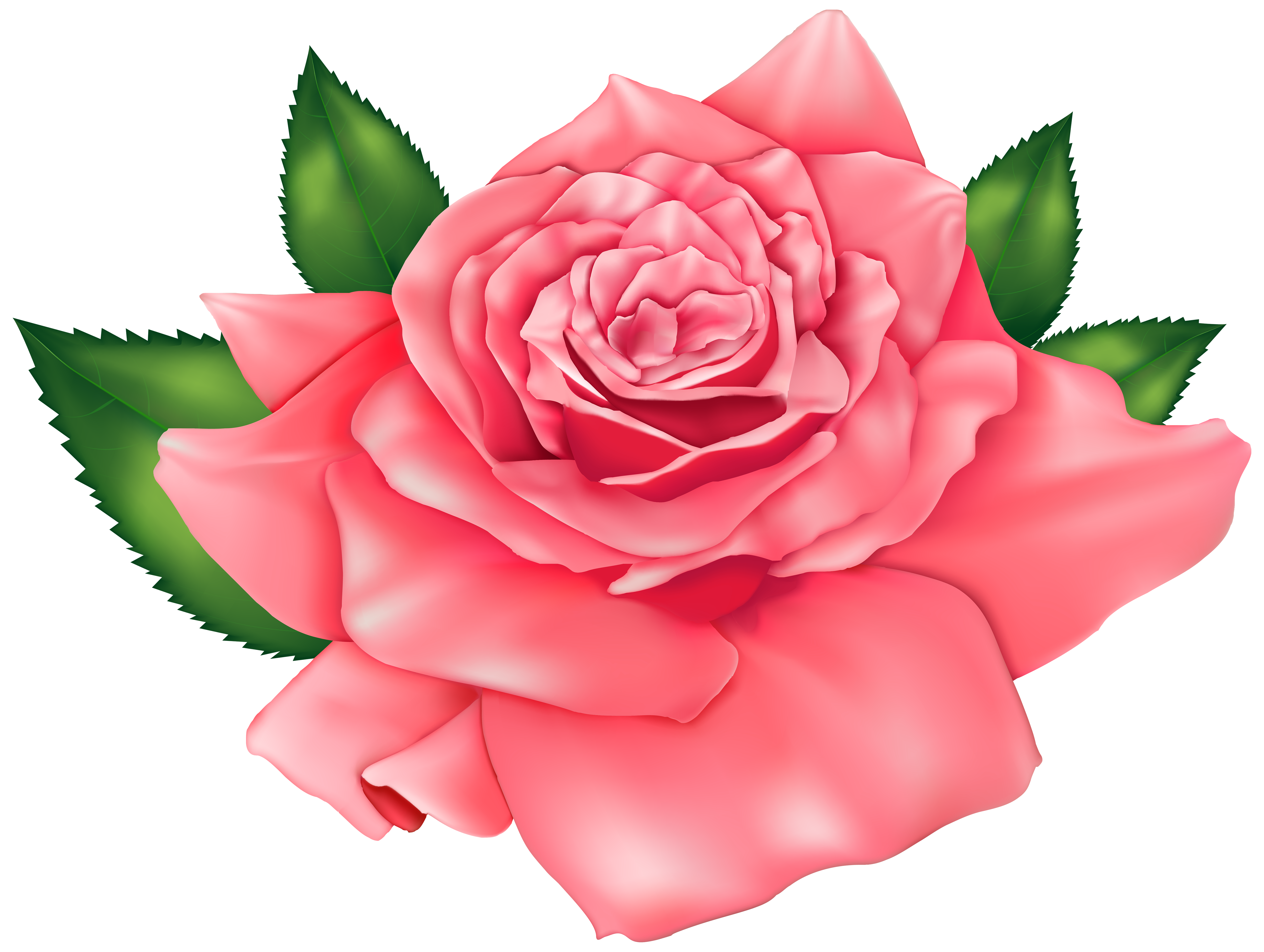 Beautiful clipart free download svg freeuse download Beautiful Rose Clip Art   Clipart Free Download - Clip Art Library svg freeuse download