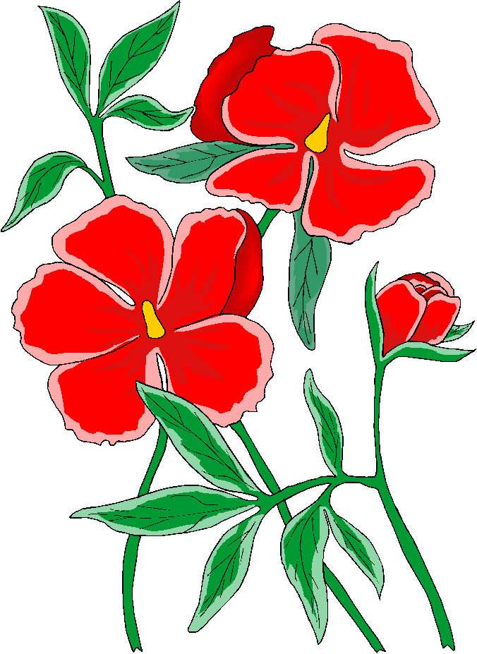 Free clipart may with geranium border. Beautiful download clip art