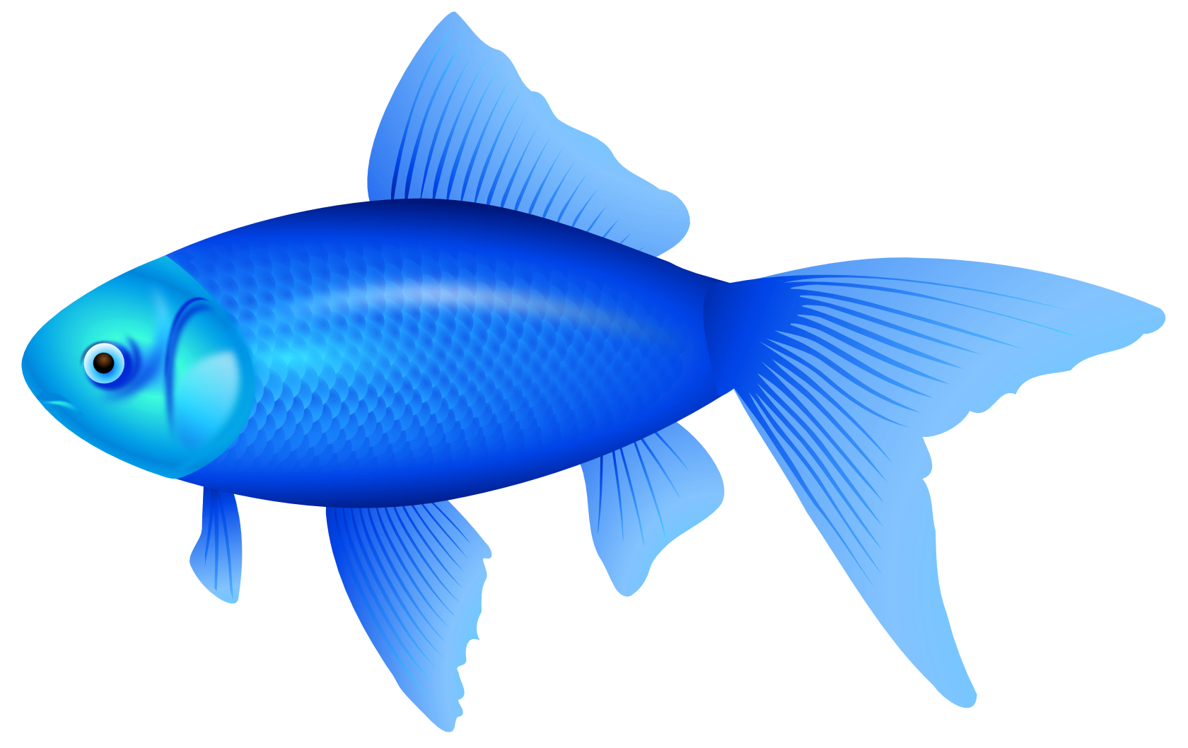 Red and blue fish clipart clipart transparent stock Blue Fish PNG Clipart Image - Best WEB Clipart clipart transparent stock