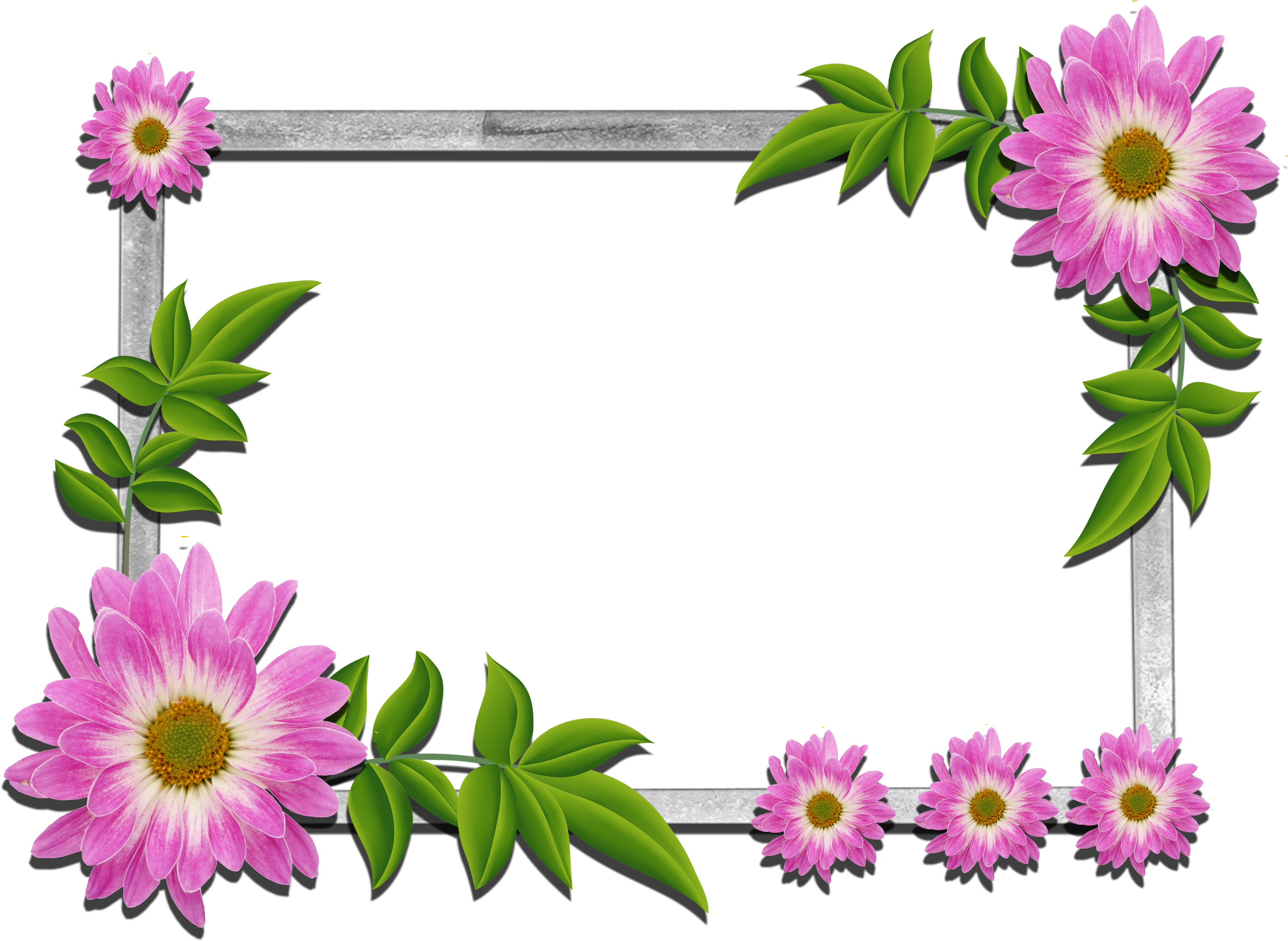 Beautiful flower frames clipart vector transparent library Beautiful Frames For Photos Free Download - Walaikum Assalam ... vector transparent library