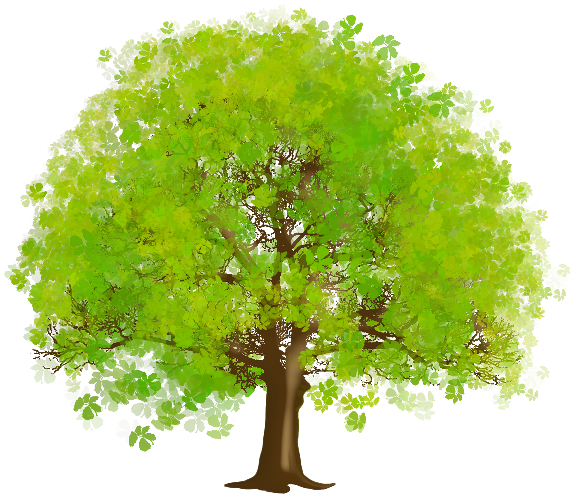 Family tree with people clipart picture royalty free download Large Green Tree PNG Clipart | Illustrations | Pinterest | Clipart ... picture royalty free download