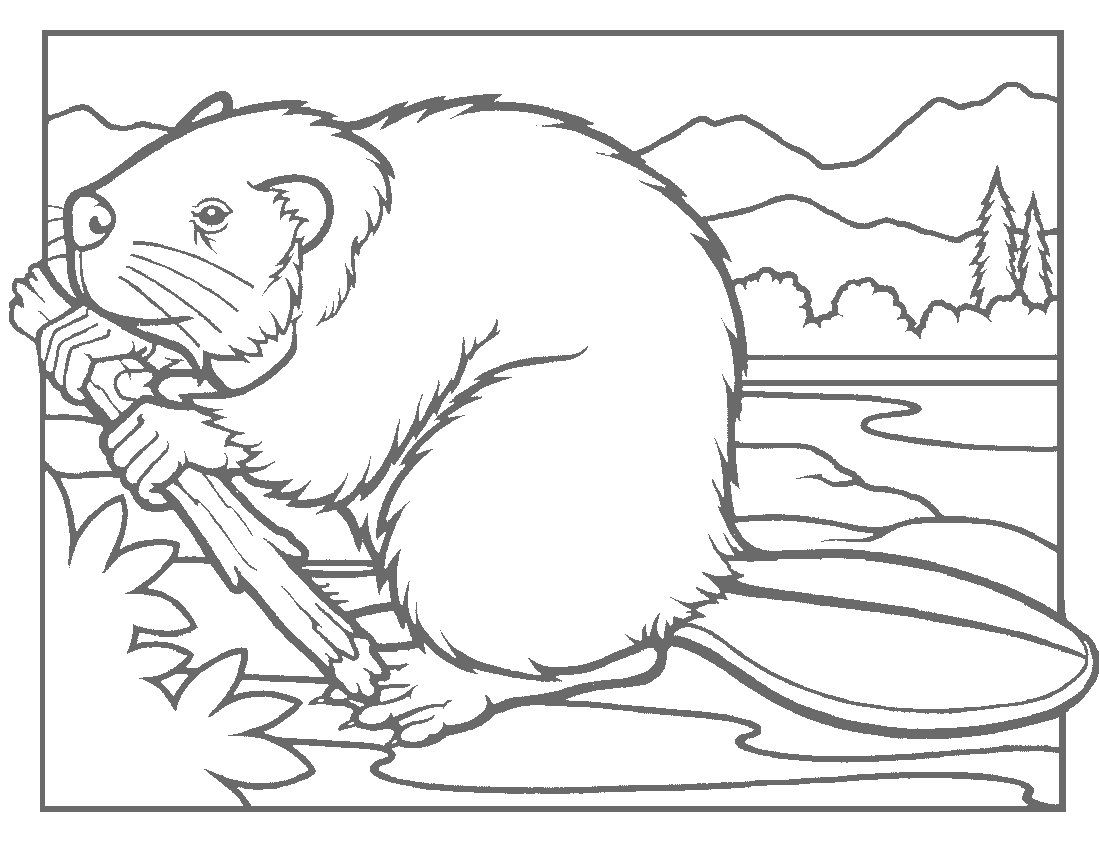 Beaver mother clipart to color image library stock beaver coloring page | Coloring 4 | Animal coloring pages, Free ... image library stock