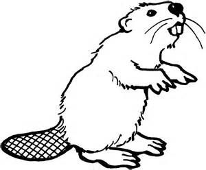 Beaver mother clipart to color freeuse stock beaver stencils - Bing images | kids tshirts | Beaver drawing ... freeuse stock