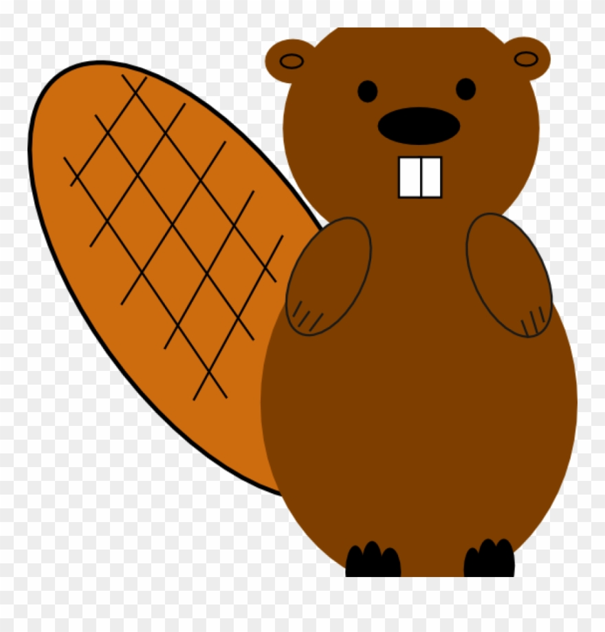 Beavertail clipart graphic transparent library Clipart Beaver Beaver No Smile Clip Art At Clker Vector - Png ... graphic transparent library