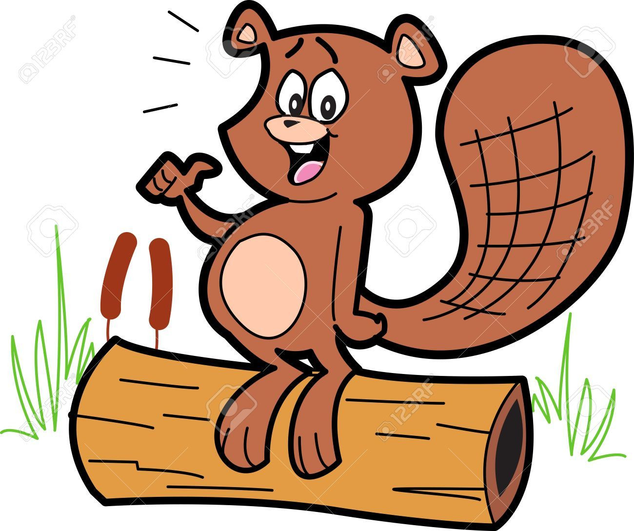 Beavertail clipart graphic stock Beaver tail clipart 3 » Clipart Portal graphic stock