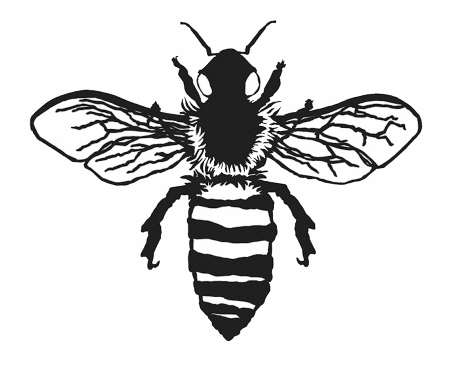 Bee clipart realistic picture royalty free stock Vintage Bee Png - Realistic Bee Clip Art Black And White {#424956 ... picture royalty free stock