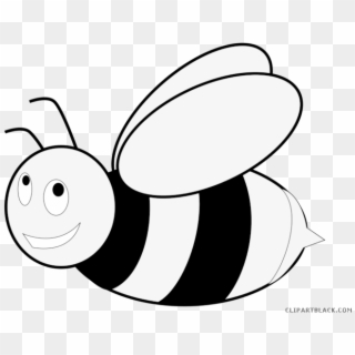 Cartoon honey bee clipart black and white banner Free Bee PNG Images | Bee Transparent Background Download - PinPNG banner