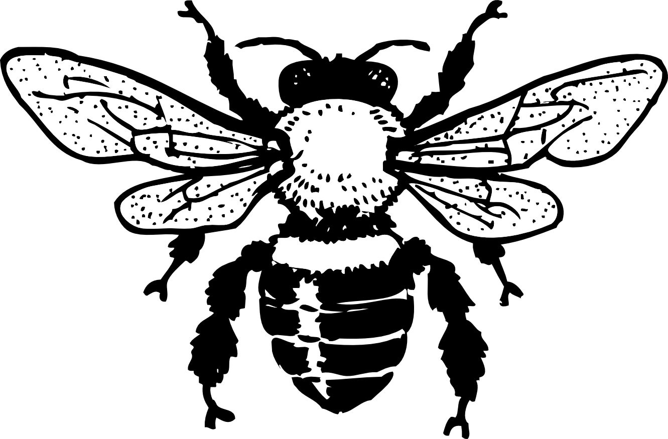 Bee with flower clipart black and white banner royalty free library Honey Bee Tattoo Honey bee tattoo design | beer label art ... banner royalty free library