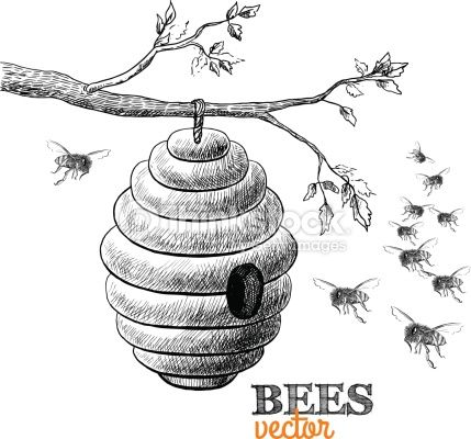 Bee hives in trees clipart jpg black and white download beehive drawing - Google Search | Bees | Beehive drawing, Bee ... jpg black and white download