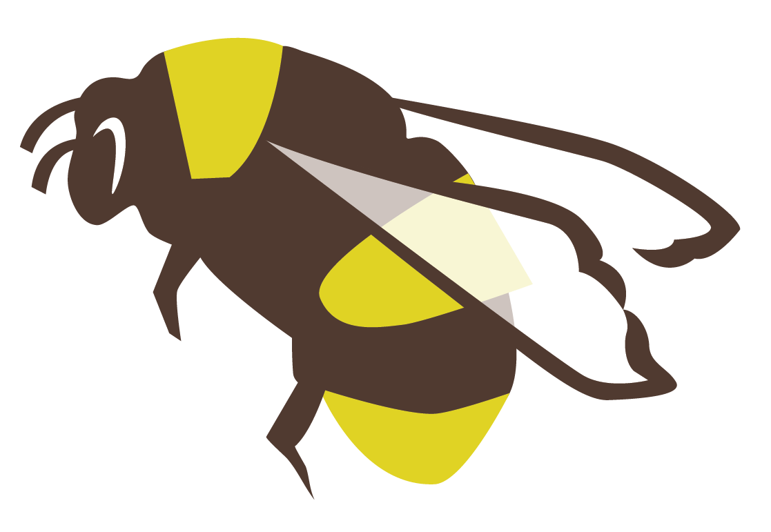 Bee pollinating flower clipart clip freeuse download RESOURCES for BEE FRIENDLY FARMERS and GARDENERS | www.seeds.ca clip freeuse download