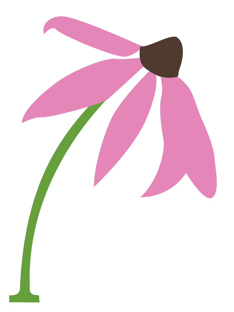 Bee pollinating flower clipart clipart transparent Pollination Canada | www.seeds.ca clipart transparent