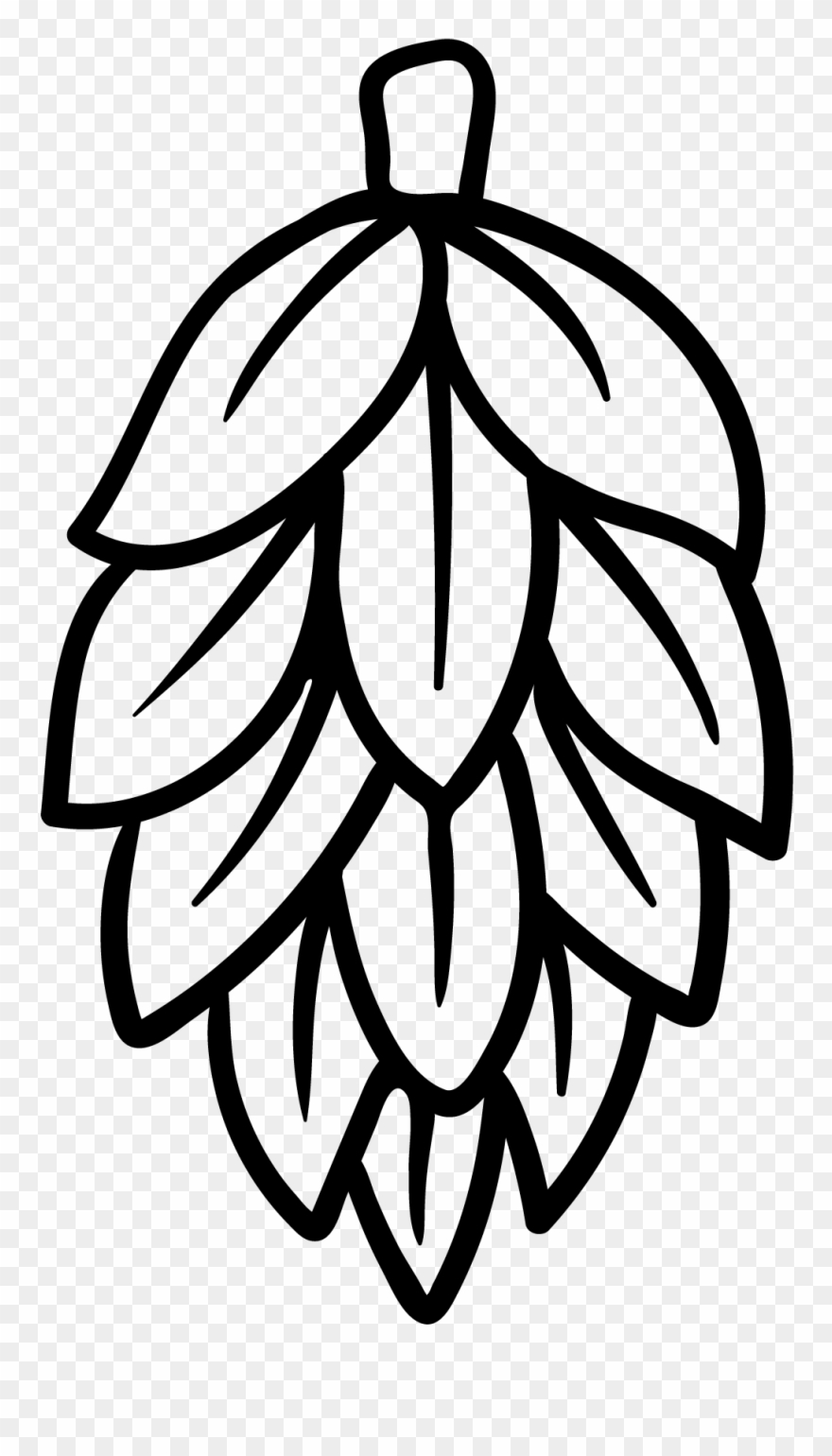 Beer hops clipart picture library stock Hops - Black And White Beer Hops Clipart (#4087912) - PinClipart picture library stock