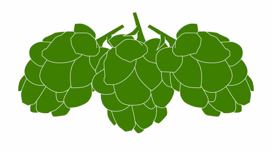 Beer hops clipart picture download Beer Hops Clipart Free PNG Images & Clipart Download #2553771 ... picture download