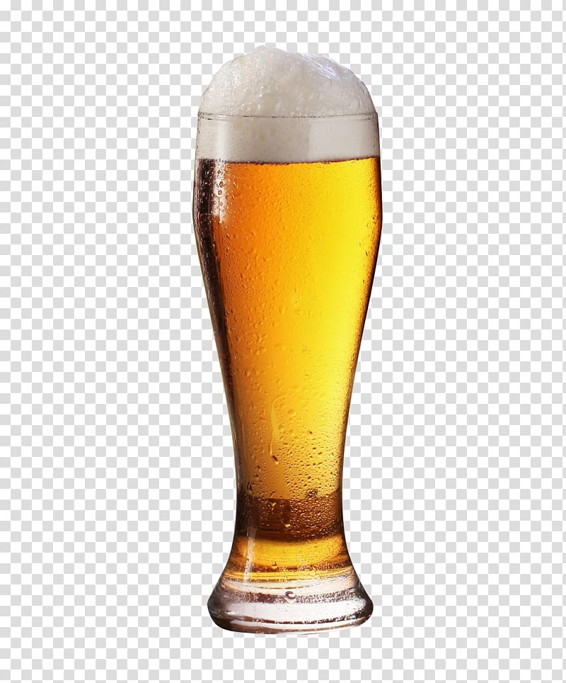 Beer pint glass clipart vector library library Beer glassware, Beer Glass, pilsner glass filled with beer ... vector library library