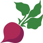 Beet clipart pictures clipart transparent library Beet clipart 1 » Clipart Station clipart transparent library