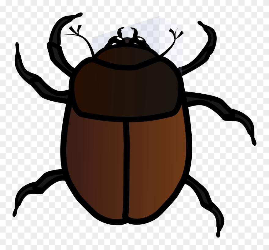 Beetle images clipart clip art transparent stock June Bug Clipart - Bug Clipart - Png Download (#35954) - PinClipart clip art transparent stock