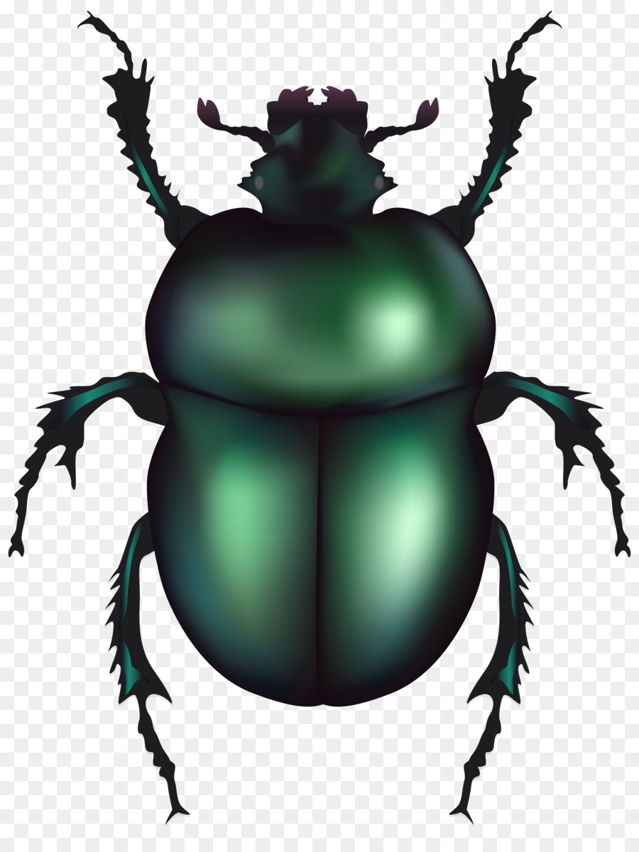 Beetle print clipart clip art library stock Volkswagen Beetle Dung beetle Clip art - insect png download - 6101 ... clip art library stock