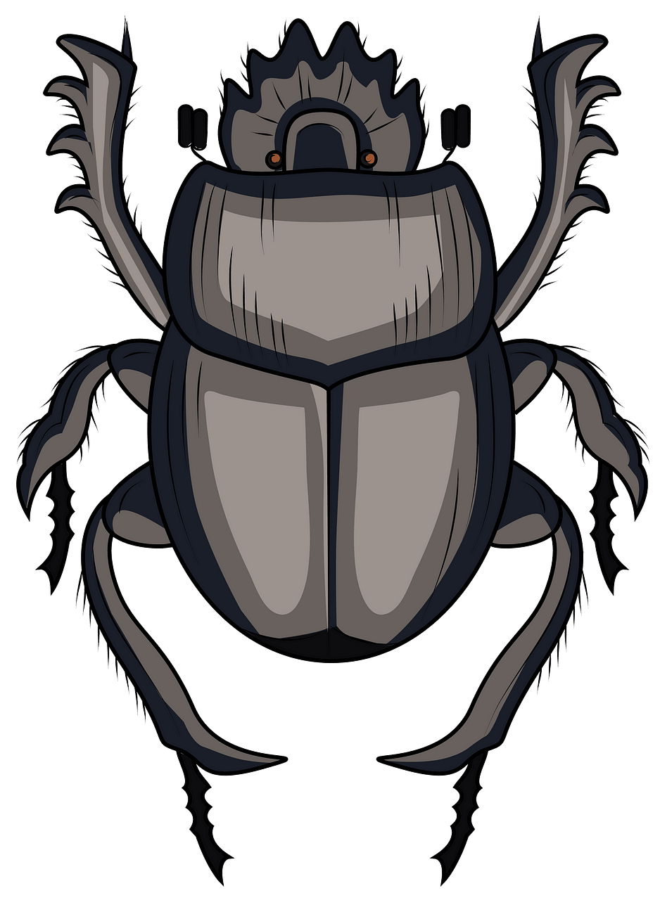 Beetle print clipart freeuse stock Scarabaeus Dung Beetle clipart. Free download. | Creazilla freeuse stock