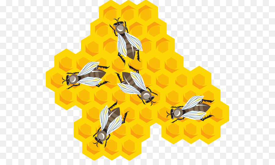 Beezwax clipart graphic stock Bee Cartoon clipart - Bee, Beehive, Honeycomb, transparent clip art graphic stock