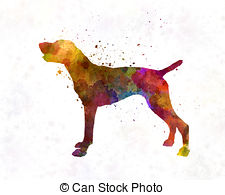 Belgian shorthaired pointer clipart clipart transparent stock German shorthaired pointer Illustrations and Clipart. 31 German ... clipart transparent stock