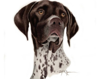 Belgian shorthaired pointer clipart picture royalty free stock PAPILLON Dog Pencil Drawing ART Print Signed by Artist DJ picture royalty free stock
