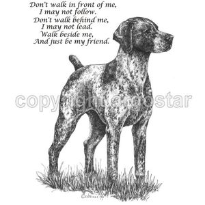Belgian shorthaired pointer clipart royalty free library German Shorthaired Pointer Shop - T-shirts, sweatshirts, prints ... royalty free library