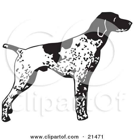 Belgian shorthaired pointer clipart picture free stock Belgian shorthaired pointer clipart - ClipartFest picture free stock